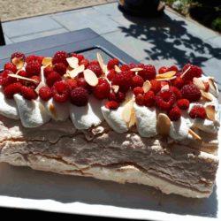 Biscuit meringué fraises des bois framboises